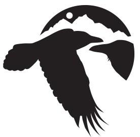 NCI New Logo