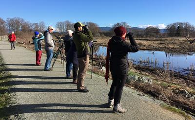 2019 Winter Birding Page.jpg