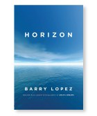 2019-NOW-Cover-Horizon.jpg