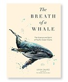 2019-NOW-Cover-Whale.jpg