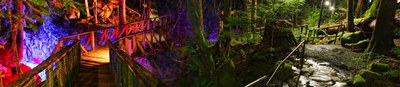 Newhalem At Night Light Show