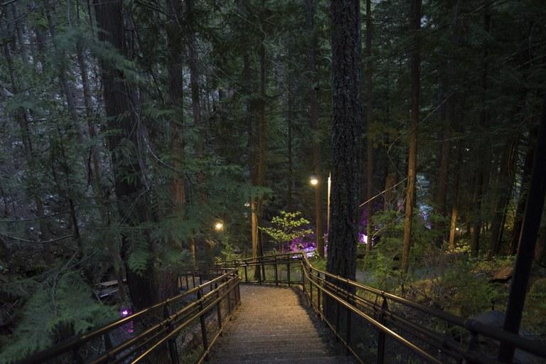 SCL - Ladder Creek.jpg