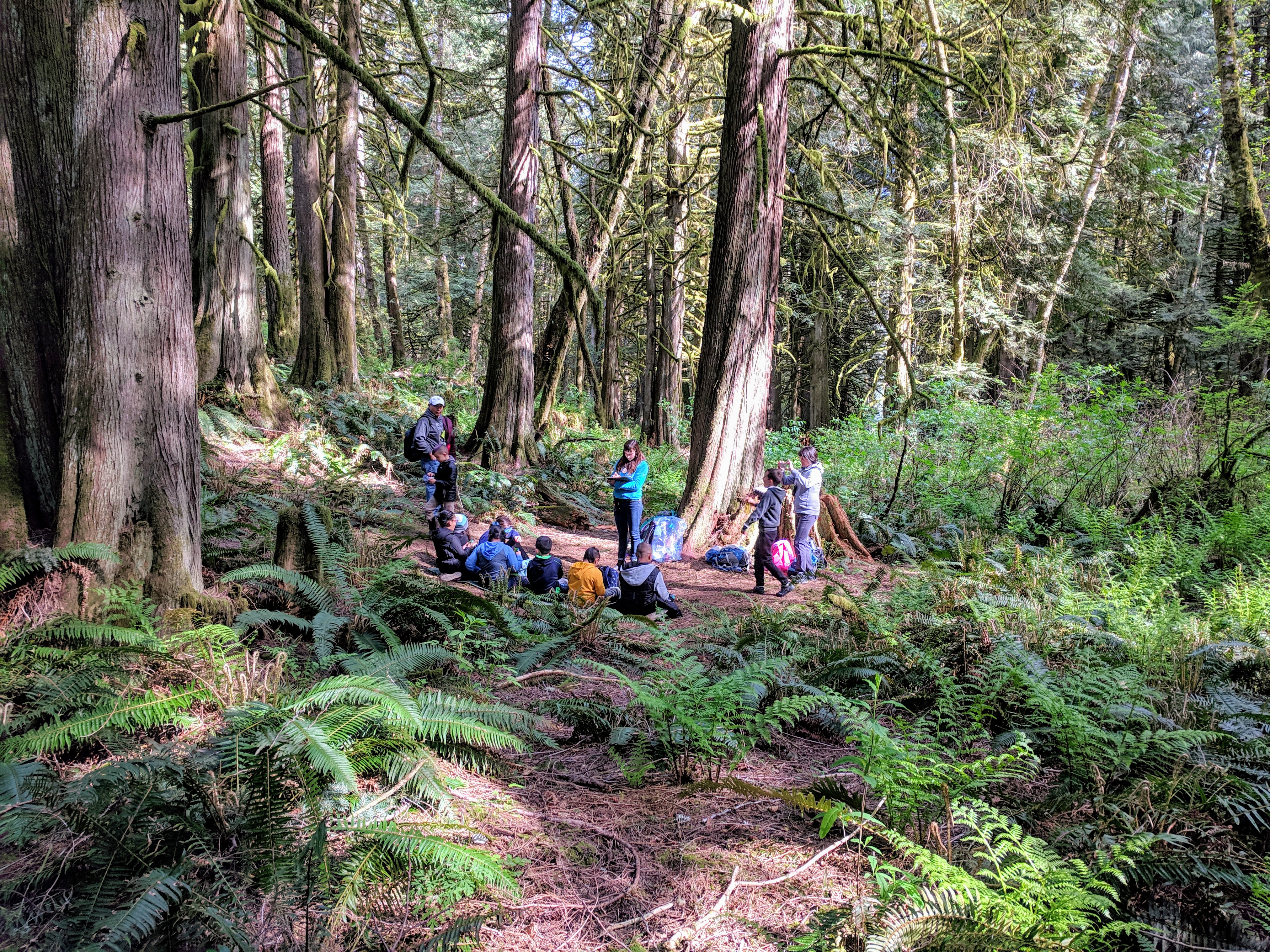 forest-school-may-2019_46969267084_o.jpg