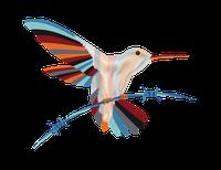 HUMMINGBIRD trans.png